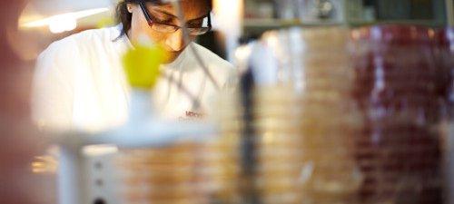Research - scientist in lab with Bunsen burner