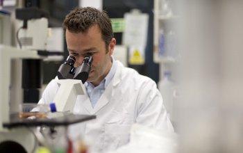 ICH researcher using microscope