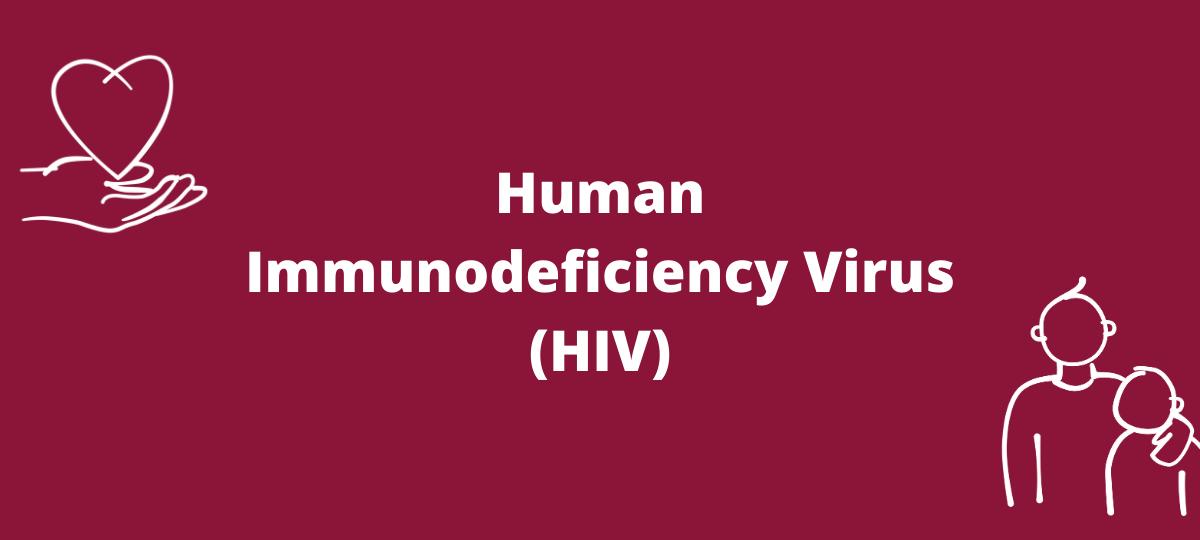 Image represents HIV - Human Immunodeficiency Virus