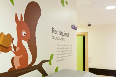 Squirrel Ward artwork signage with fact