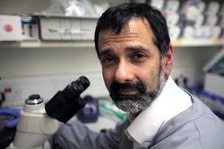 Professor Persis Amrolia, Consultant in Bone Marrow Transplant at Great Ormond Street Hospital (GOSH)
