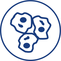 Gene stem and Cellular Therapies BRC Logo